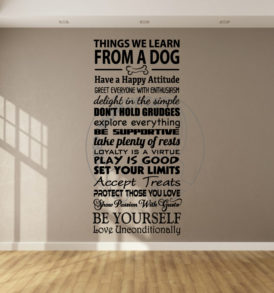 things_we_learn_from_dogs