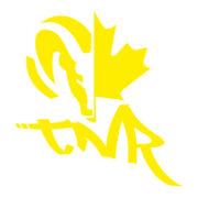 TNR_Onsie_yellow